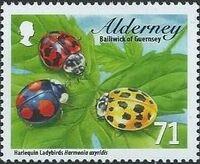 Alderney 2014 Alderney Ladybirds f