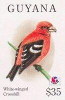 Guyana 1994 Birds of the World (PHILAKOREA '94) ag