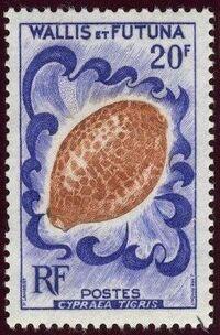 Wallis and Futuna 1962 Sea Shells f