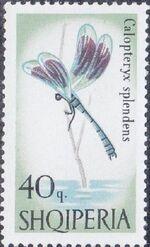 Albania 1966 Butterflies and Dragonflies e