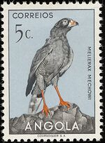 Angola 1951 Birds from Angola a