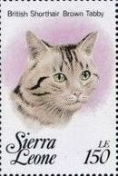 Sierra Leone 1993 Cats of the World j