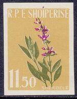 Albania 1962 Medicinal Plants f