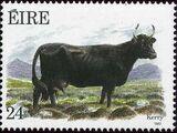 Ireland 1987 Irish Cattle
