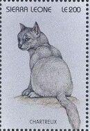 Sierra Leone 1996 Cats of the World za