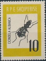 Albania 1963 Insects - Beetles d