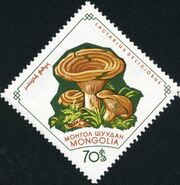 Mongolia 1964 Mushrooms g