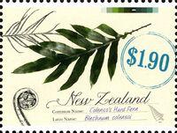 New Zealand 2013 New Zealand Native Ferns c