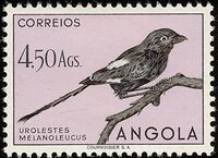 Angola 1951 Birds from Angola m