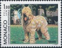Monaco 1982 International Dog Show, Monte Carlo b