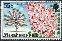 Montserrat 1976 Flowering Trees j