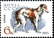 Soviet Union (USSR) 1965 Hunting and Service Dogs g