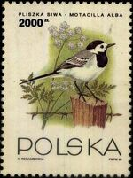 Poland 1993 Birds b