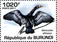 Burundi 2011 Birds of Burundi a