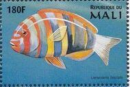 Mali 1997 Marine Life o