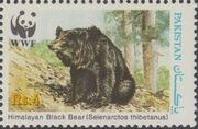 Pakistan 1989 WWF Asiatic Black Bear d
