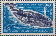 French Southern and Antarctic Territories 1966 Blue Whale a