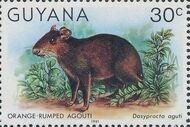 Guyana 1981 Wildlife l