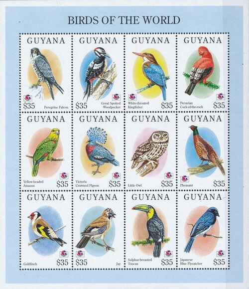 Guyana 1994 Birds of the World (PHILAKOREA '94) SSb1