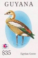 Guyana 1994 Birds of the World (PHILAKOREA '94) af