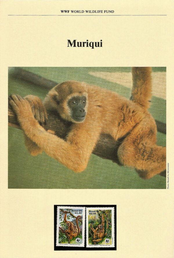 Brazil 1984 WWF - Southern Muriqui WWFIOPa
