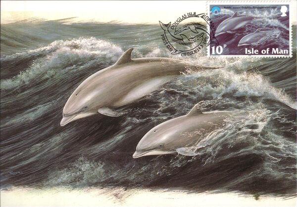 Isle of Man 1998 Year of the Ocean - Marine Mammals ja