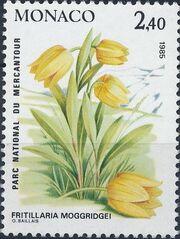 Monaco 1985 Flowers in Mercantour National Park c