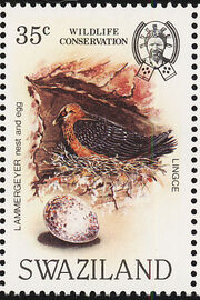 Swaziland 1983 WWF Bearded Vulture e