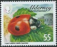 Alderney 2014 Alderney Ladybirds c