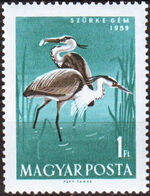 Hungary 1959 Water Birds f