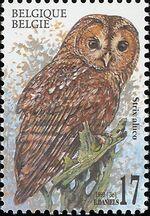 Belgium 1999 Owls c
