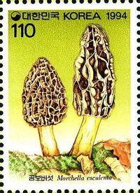 Korea (South) 1994 Mushrooms (2nd Issue) b