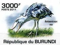 Burundi 2011 Birds of Burundi h