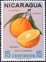 Nicaragua 1968 Fruits c