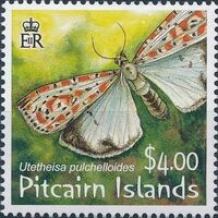Pitcairn Islands 2007 Salt and Pepper Moth b