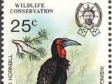 Swaziland 1985 WWF Southern Ground Hornbill (Audubon birth bicentenary)