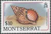 Montserrat 1988 Sea Shells p