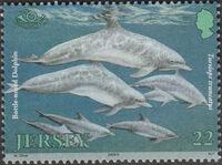 Jersey 2000 Marine Life IV - Marine Mammals a
