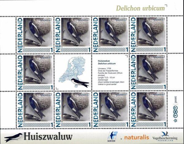 Netherlands 2011 Birds in Netherlands MS26