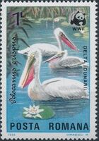 Romania 1984 WWF - Pelicans of the Danube Delta c