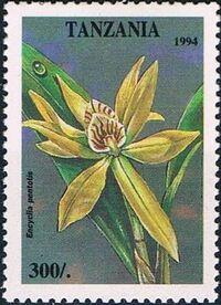 Tanzania 1995 Wild Flowers f