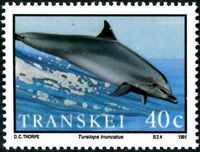 Transkei 1991 Dolphins b