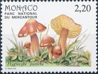 Monaco 1988 Fungi in Mercantour National Park b