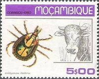 Mozambique 1980 Ticks from Mozambique d