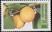 Togo 1996 Fruits c