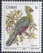 Ciskei 1981 Definitive - Birds a