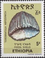 Ethiopia 1977 Fossil Shells a