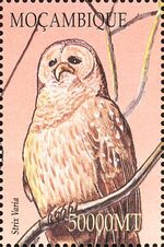 Mozambique 2002 Birds of Africa bb