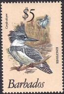 Barbados 1979 Birds q