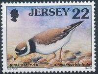 Jersey 1998 Seabirds and waders (3rd Issue) b